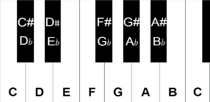 Piano Keyboard With Accidentals